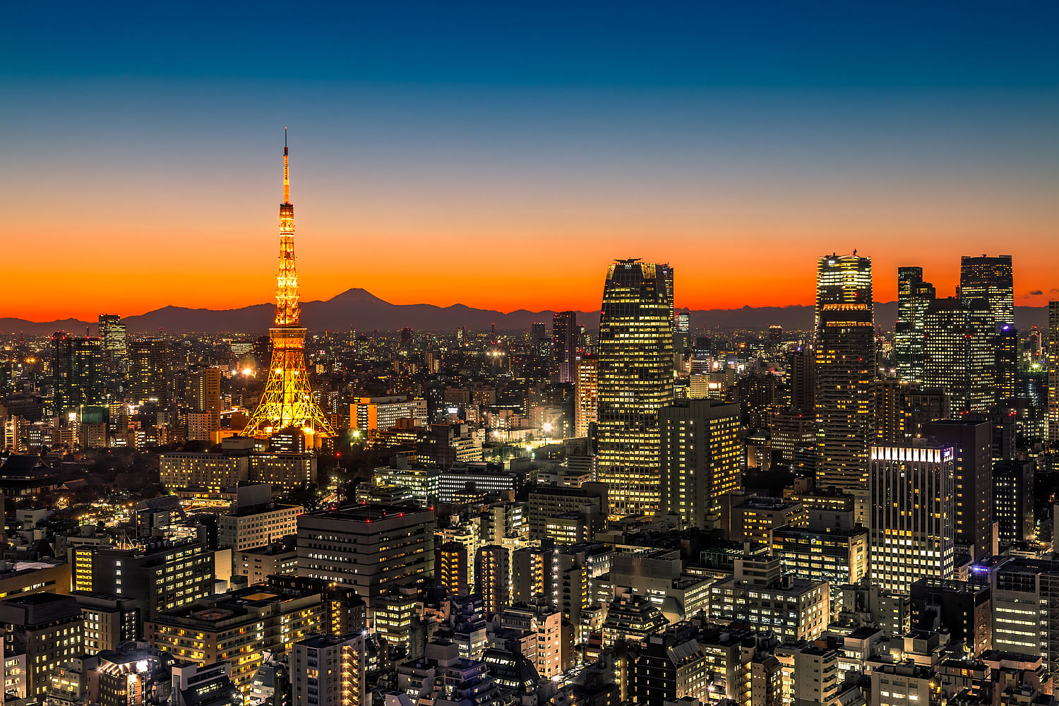Panorama of Tokyo at Sunset with Mt. Fuji on the Horizon