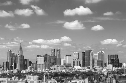 Tokyo, Japan - The Shinjuku  Skyline in Black and White