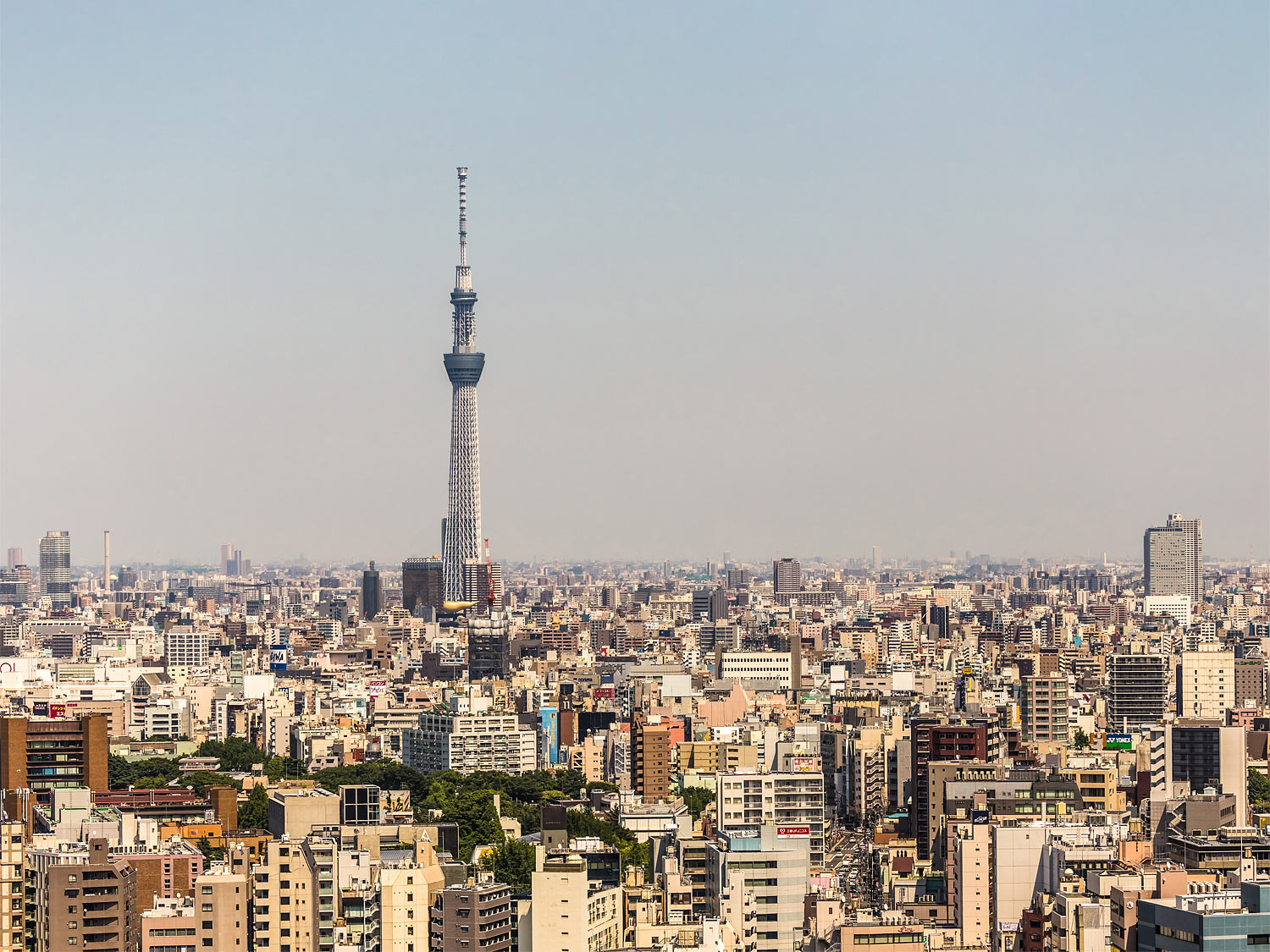 Panorama of Tokyo with the Skytree