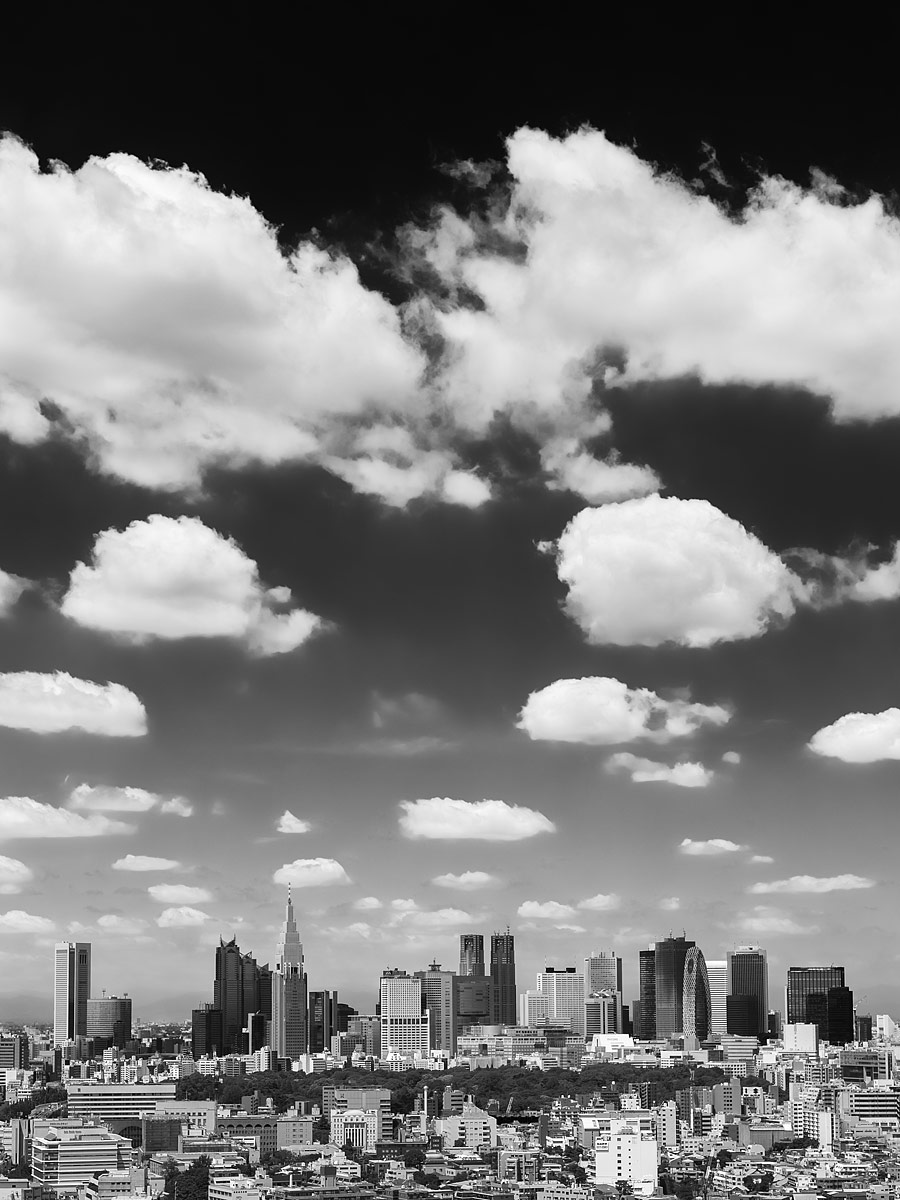 Tokyo, Japan - The Skyline of Shinjuku in Black and White